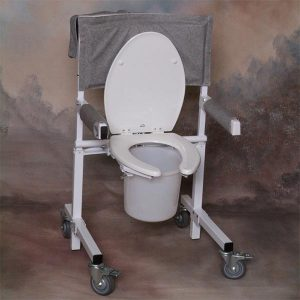 A mobile toilet aid for lifting individuals down and up from the toilet